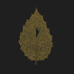 Between Leaves | Forestal - DEAR JOHN LETTER