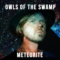 Meteorite - OWLS OF THE SWAMP